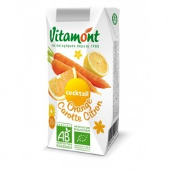 JUS COCKTAIL ORANGE CAROTTE CITRON 20CL BRIQ.