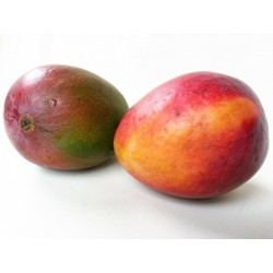 FL MANGUE AU POIDS