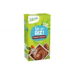 DESSERT RIZ CHOCOLAT BIO