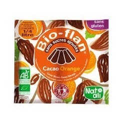 BIOFLAN CHOCOLAT ORANGE 10G EQUITABLE SANS SUCRE